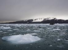 global sea ice levels